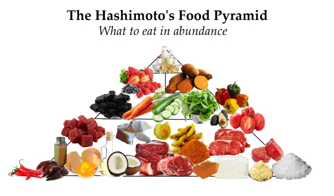 hashi-food-pyramid1-2